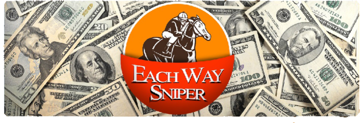 Each Way Sniper Banner