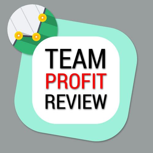 team profit review